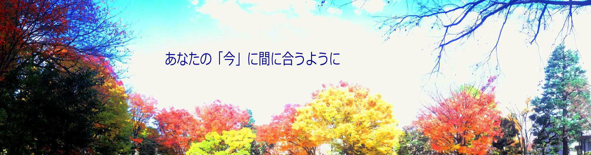 文京区議会議員 海津敦子/かいづあつこ